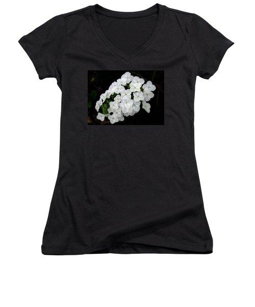 Oak Leaf Hydrangea Women's V-Neck T-Shirt