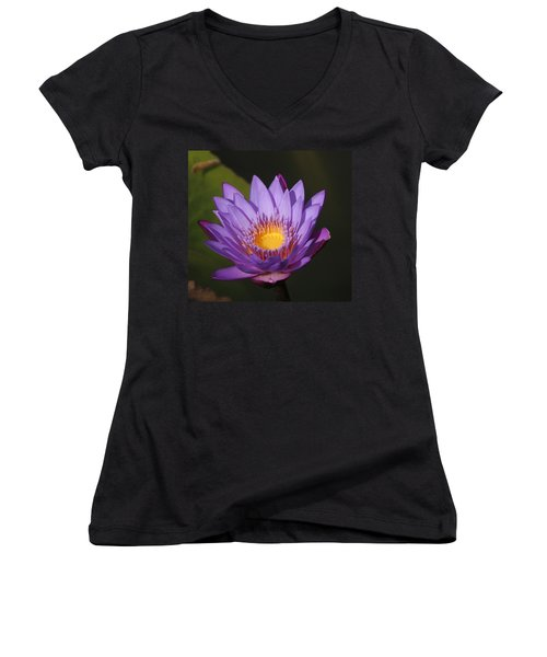 Purple Water Lily Women's V-Neck