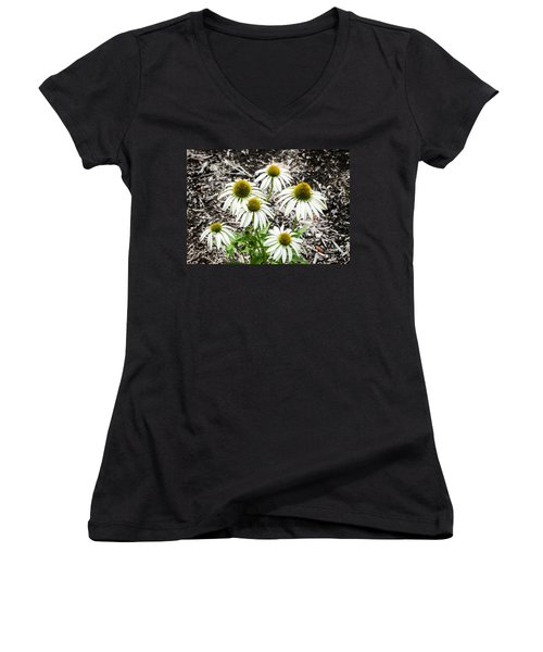 Women's V-Neck T-Shirt (Junior Cut) featuring the photograph  White Echinacea by Paul Mashburn
