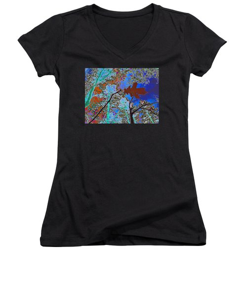 before the descent BLUE Women's V-Neck