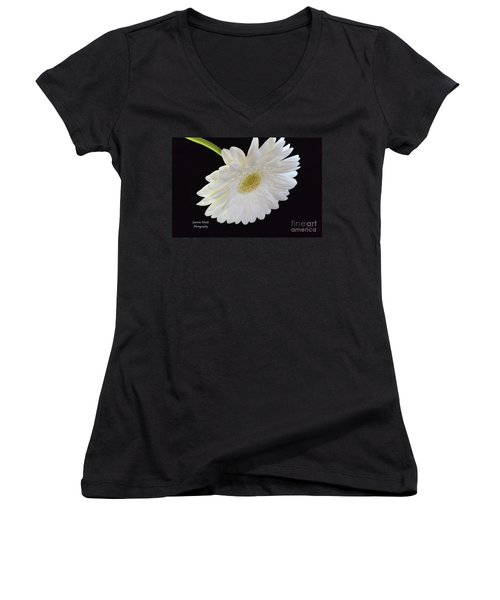 Women's V-Neck T-Shirt (Junior Cut) featuring the photograph Bright White Gerber Daisy # 2 by Jeannie Rhode