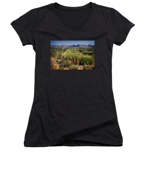 Desert Wildflowers Women's V-Neck T-Shirt