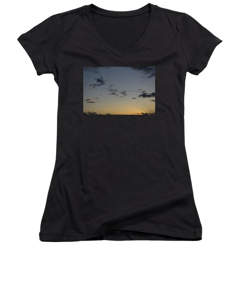 Evening Flight Women's V-Neck T-Shirt
