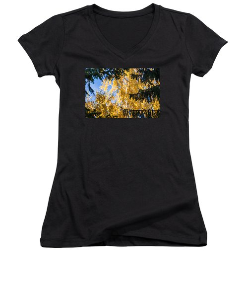 Forest Tale - Featured 3 Women's V-Neck (Athletic Fit)