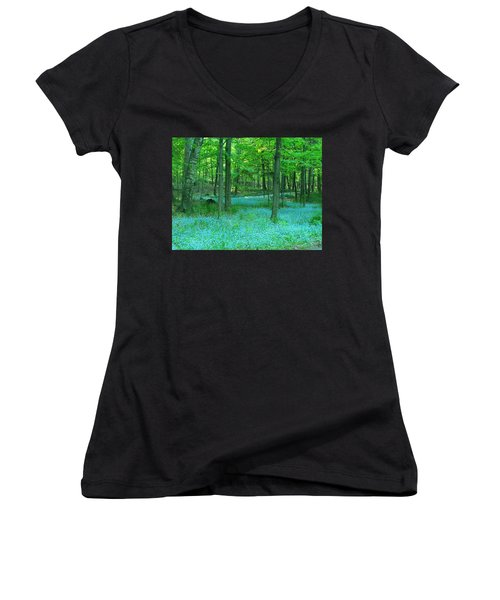 Forget-me-nots In Peninsula State Park Women's V-Neck