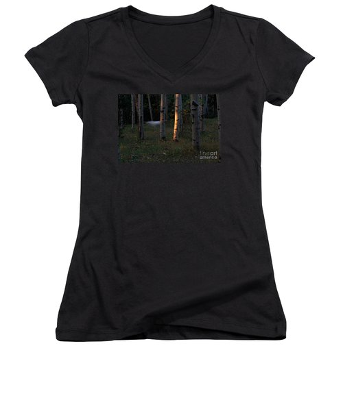 Ghostly Apparition Women's V-Neck (Athletic Fit)