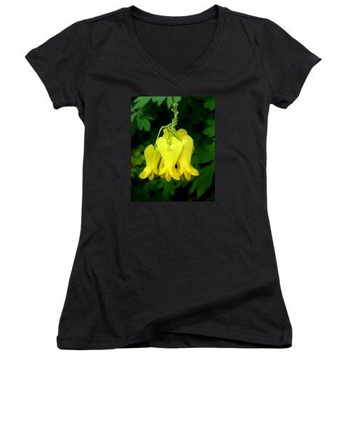 Golden Tears Vine Women's V-Neck T-Shirt (Junior Cut) by William Tanneberger