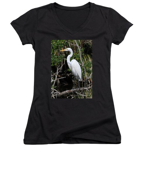 Great Egret Perched In Fallen Tree Women's V-Neck (Athletic Fit)