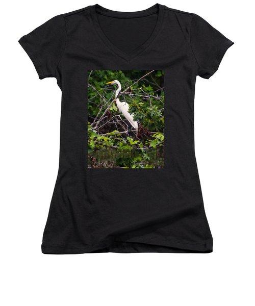 Great White Egret Women's V-Neck T-Shirt (Junior Cut) by Chris Flees