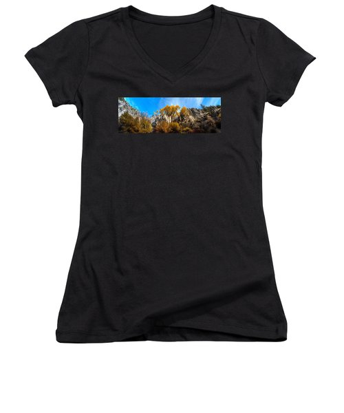 Women's V-Neck T-Shirt (Junior Cut) featuring the photograph Guardians by David Andersen