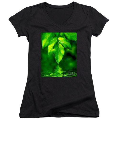 Natural Leaves Background Women's V-Neck T-Shirt