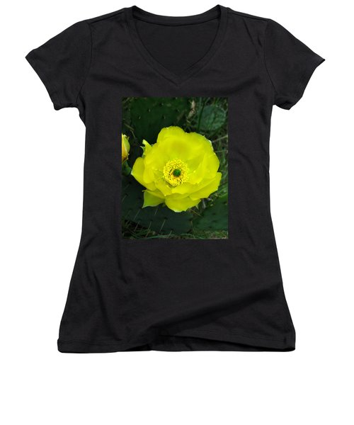 Prickly Pear Cactus Women's V-Neck (Athletic Fit)