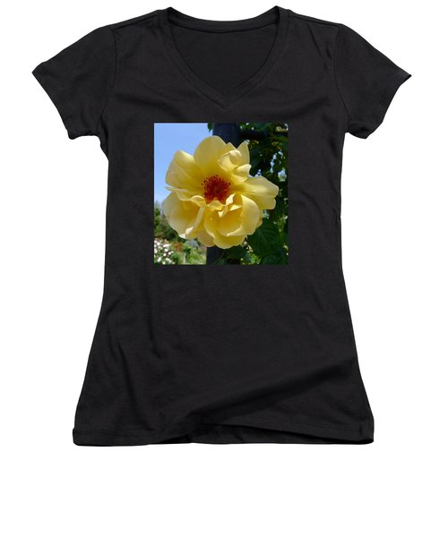 Sunny Yellow Rose Women's V-Neck T-Shirt
