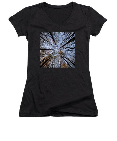 Tall Trees Women's V-Neck T-Shirt