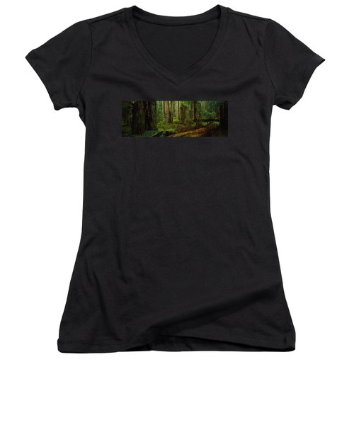 Trees In A Forest, Hoh Rainforest Women's V-Neck (Athletic Fit)