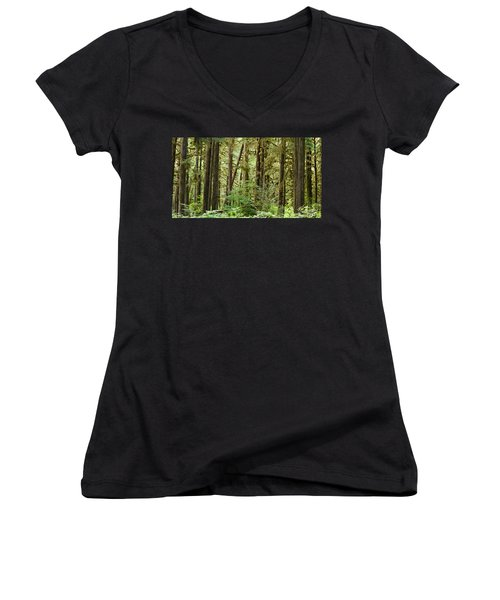 Trees In A Forest, Quinault Rainforest Women's V-Neck T-Shirt (Junior Cut) by Panoramic Images