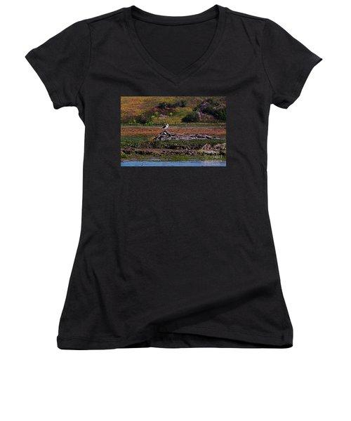 Western Gulls Nesting In A Log Women's V-Neck T-Shirt (Junior Cut) by Susan Wiedmann