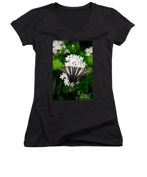 Zebra Swallowtail Women's V-Neck T-Shirt (Junior Cut) by Angela DeFrias