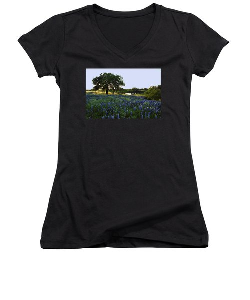 10 Women's V-Neck T-Shirt (Junior Cut) by Susan Rovira