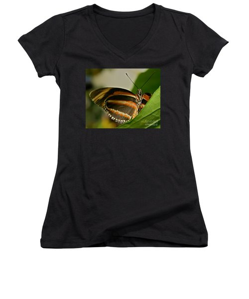 Women's V-Neck T-Shirt (Junior Cut) featuring the photograph Butterfly by Olga Hamilton