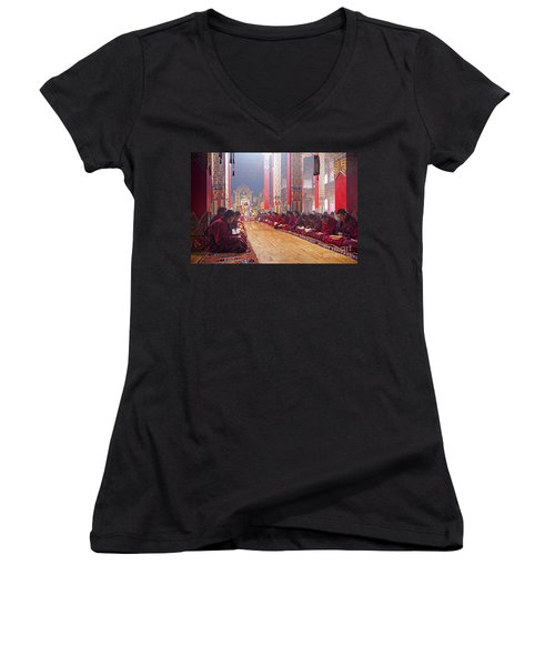 141220p194 Women's V-Neck T-Shirt (Junior Cut) by Arterra Picture Library
