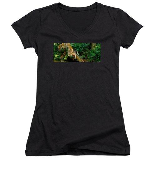 Anhinga Anhinga Anhinga On A Tree Women's V-Neck T-Shirt (Junior Cut) by Panoramic Images