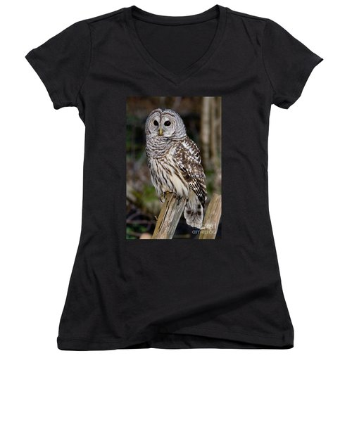 Women's V-Neck T-Shirt (Junior Cut) featuring the photograph Barred Owl by Les Palenik