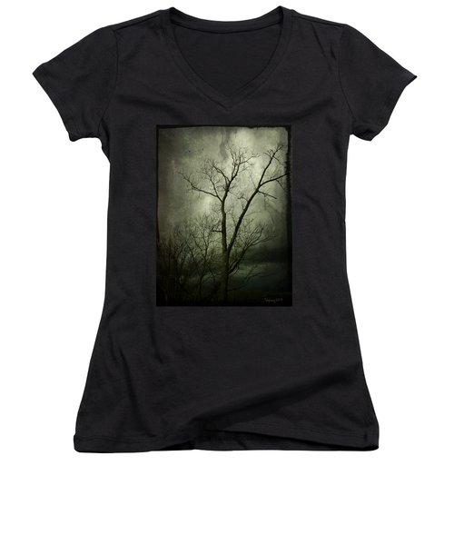 Bleak Women's V-Neck T-Shirt (Junior Cut) by Cynthia Lassiter