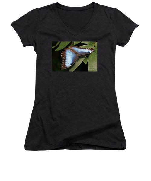 Blue Morpho Butterfly Women's V-Neck T-Shirt
