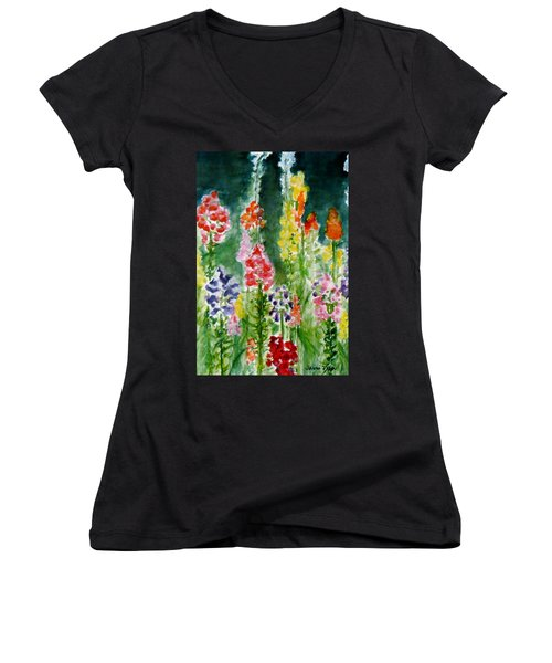 Donna's Snaps Women's V-Neck T-Shirt