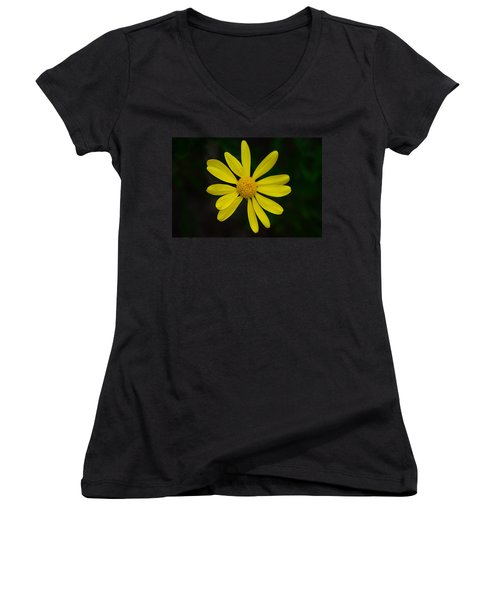 Women's V-Neck T-Shirt (Junior Cut) featuring the photograph Isolated Daisy by Debra Martz