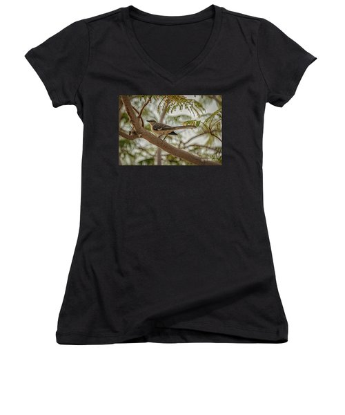 Mockingbird Women's V-Neck T-Shirt (Junior Cut) by Robert Bales