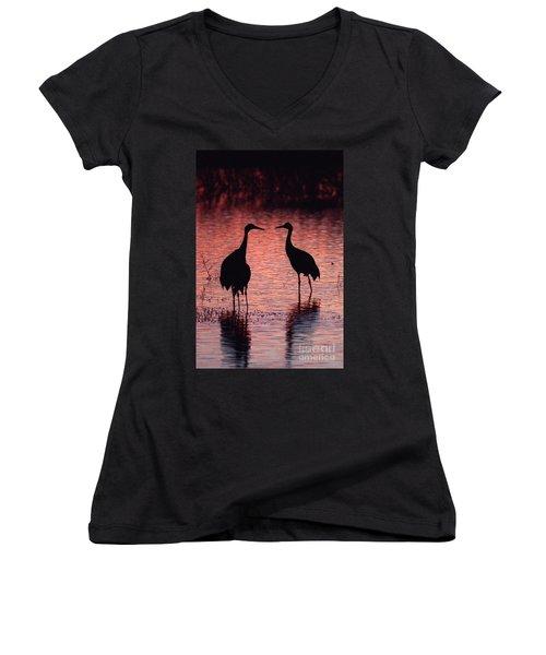 Sandhill Cranes Women's V-Neck T-Shirt (Junior Cut) by Steven Ralser
