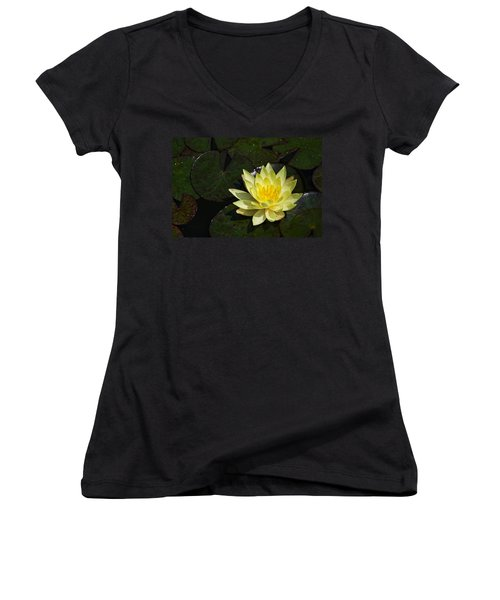 Soaking Up The Sun Women's V-Neck (Athletic Fit)