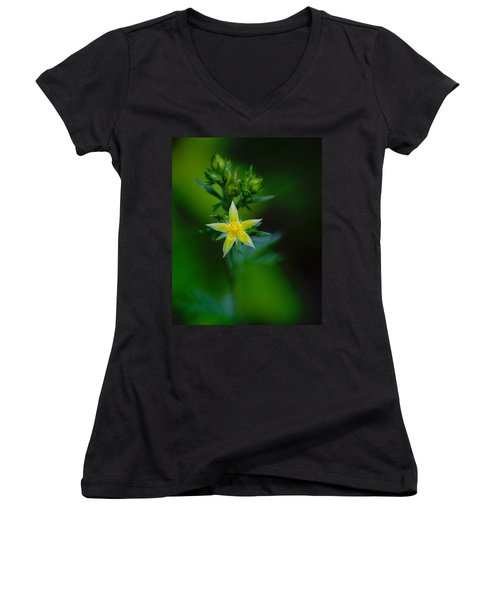 Starflower Women's V-Neck