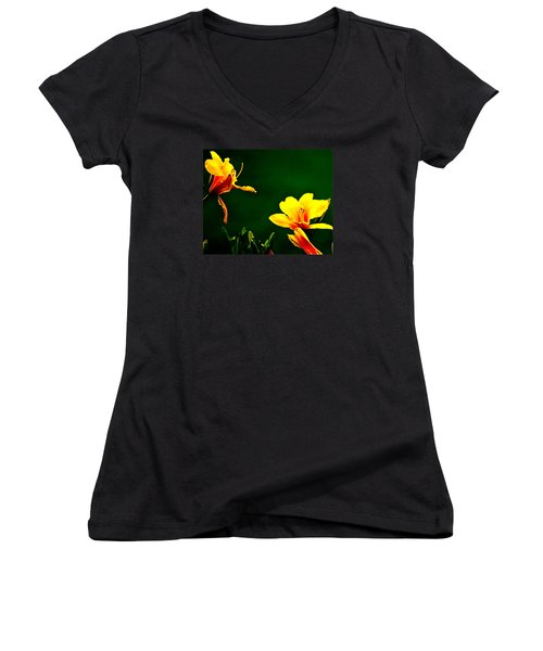 Talking Flower Heads Women's V-Neck T-Shirt