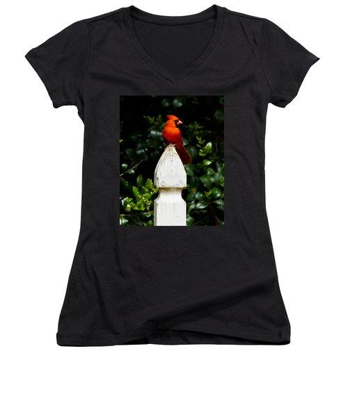 Women's V-Neck T-Shirt (Junior Cut) featuring the photograph Male Cardinal by Robert L Jackson
