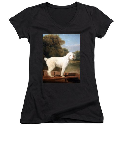 Stubbs' White Poodle In A Punt Women's V-Neck T-Shirt (Junior Cut) by Cora Wandel
