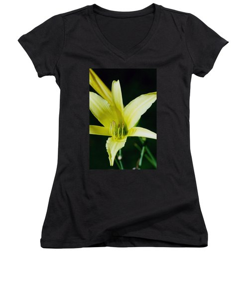 Women's V-Neck T-Shirt (Junior Cut) featuring the photograph 3d Yellow Daylily by Belinda Lee