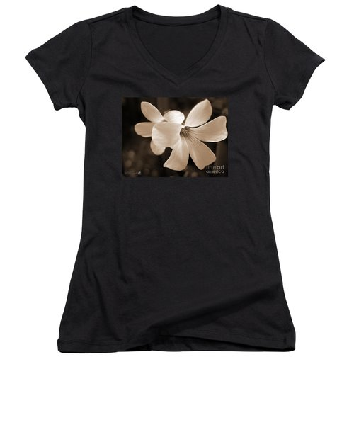 Oxalis Triangularis Or Burgundy Shamrock Women's V-Neck T-Shirt (Junior Cut) by J McCombie