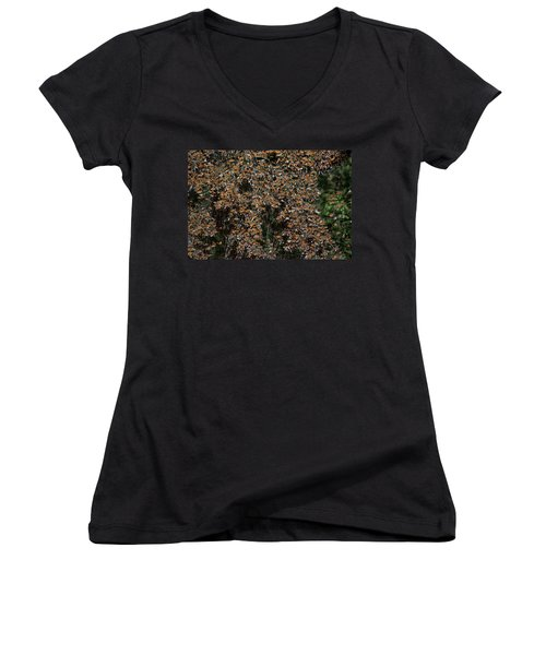 Monarch Butterflies Women's V-Neck T-Shirt