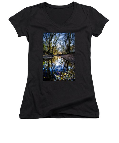 Treasure Of Leaves Women's V-Neck (Athletic Fit)