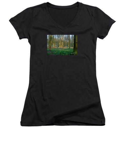 A Badbury Clump Evening Women's V-Neck T-Shirt