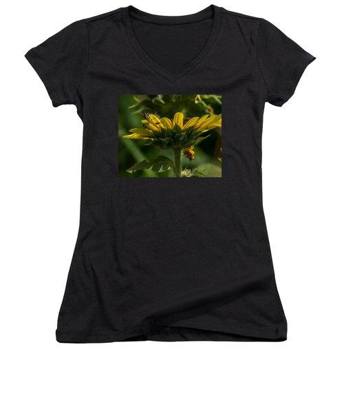 A Bugs World Women's V-Neck T-Shirt