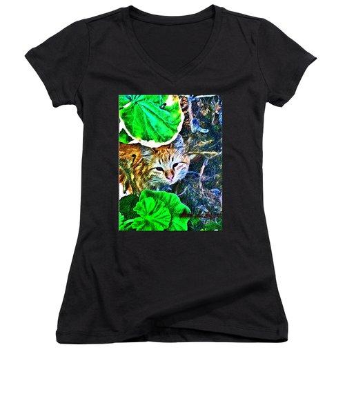 A Curious Cat Women's V-Neck T-Shirt