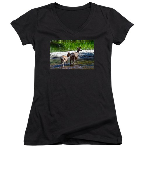 A Doe And Fawn Women's V-Neck T-Shirt (Junior Cut) by Brian Williamson