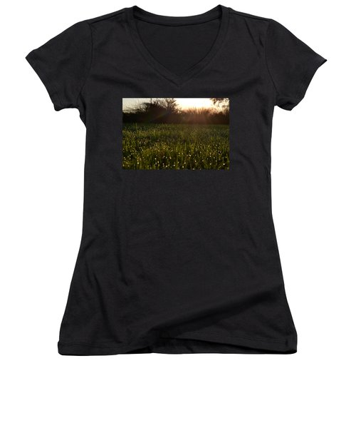 A Field Of Jewels Women's V-Neck T-Shirt (Junior Cut) by Melanie Moraga