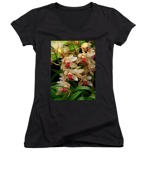 Women's V-Neck T-Shirt (Junior Cut) featuring the photograph A Gathering by Rodney Lee Williams