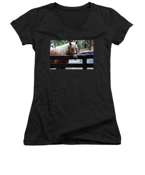 A Hilton Head Island Horse Women's V-Neck (Athletic Fit)