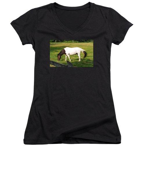 A Horse Named Dipstick Women's V-Neck